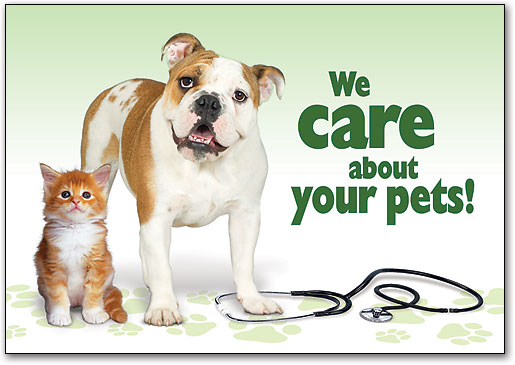 Vets-care-about-your-cat-and-dog-and-pets