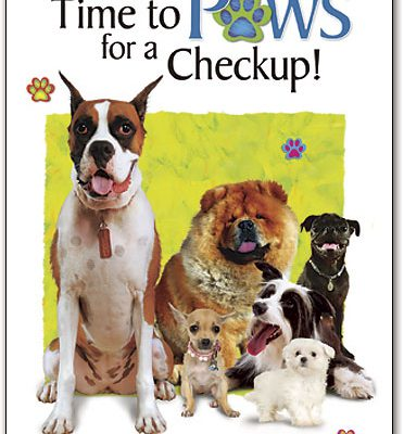 different-dogs-and-cats-sitting-together-it's-time-for-a-paws-checkup