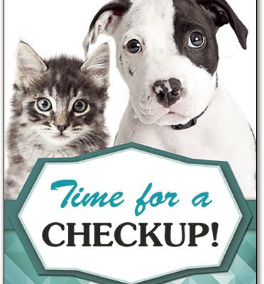kitten-and-puppy-telling-you-it's-time-for-a-checkup