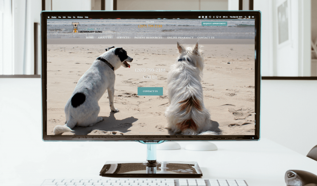 Desktop monitoring displaying a veterinary website with two dogs on a beach.