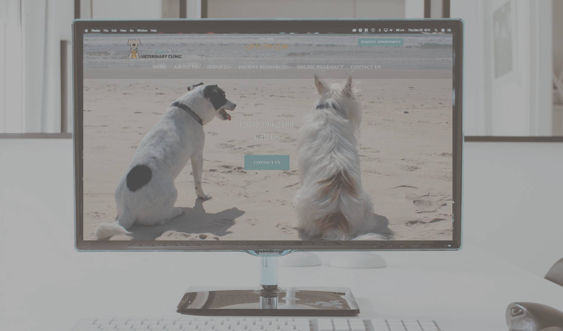 7 Ways to Tell if Your Pet-Centric Business Needs a New Website