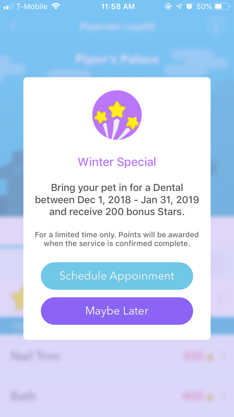 A screenshot of the PetDesk Loyalty Specials feature